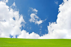 Green field with blue sky and clouds Stock Images