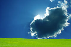 Green field with blue sky and clouds. White clouds, blue sky, green grass, sunny day, spring weather Royalty Free Stock Photo
