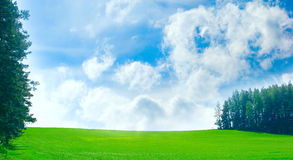Green field with blue sky and clouds. White clouds, blue sky, green grass, sunny day, spring weather Stock Photos