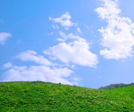 A green field with blue sky and clouds. Green field with blue sky and clouds Royalty Free Stock Images