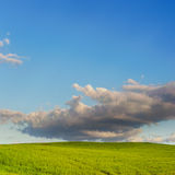 Green field and blue sky with clouds Royalty Free Stock Photography