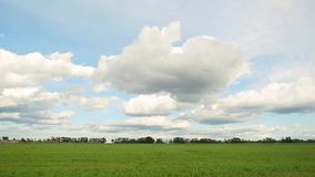 Green field and blue sky with clouds in slowmotion. 1920x1080 stock footage