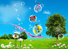 Green Field, blue sky and fishes Royalty Free Stock Image