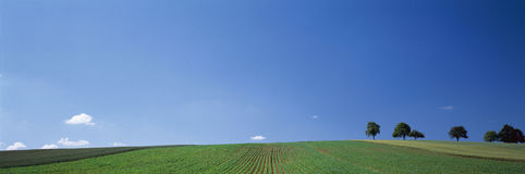 Green field and blue sky, Germany Royalty Free Stock Photography