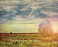 Green field and blue sky. Sky field landscape on a textured vintage paper background Royalty Free Stock Photography