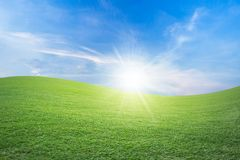 Green field and blue sky with light clouds,Image of green grass field and bright blue sky. The image of the meadow used to design or enter the ad text royalty free stock photo