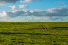 Green field and a the blue sky. In lowland region in Lithuania Royalty Free Stock Image