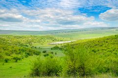 Green field and blue sky. Picturesque hills formed by an old riv Royalty Free Stock Photo