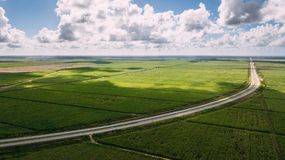 Green field and blue sky. Road in the middle Royalty Free Stock Photos
