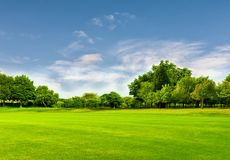 Green field and blue sky in spring.Great as a background Royalty Free Stock Photography