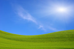 Green field and the blue sky with sun Stock Photography