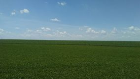 Green field/Blue Sky Stock Photos