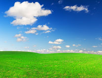 Green field and blue sky whit white clouds Royalty Free Stock Photos