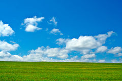 Green field, blue sky and white clouds. Background Royalty Free Stock Photo