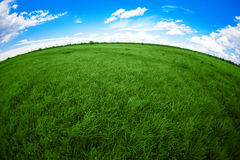 Green field, blue sky and white clouds Stock Photos
