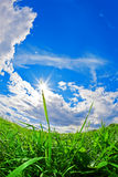 Green field, blue sky and white clouds Royalty Free Stock Images