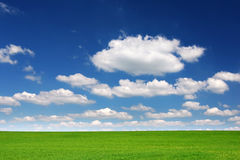 Green field, blue sky and white clouds Royalty Free Stock Photography