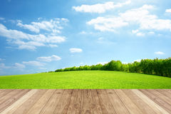 Green field with blue sky and wooden Stock Photo