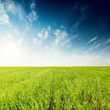 Green field and blue sunset with clouds Royalty Free Stock Image