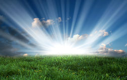 Green field and bright sun on blue sky Stock Image