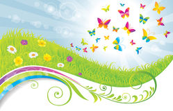The green field with butterflies. Royalty Free Stock Images