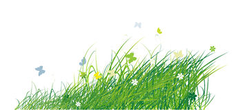 Green field with butterflies, summer background. Vector illustration Royalty Free Stock Photo