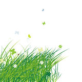 Green field with butterflies, summer background. Vector illustration Stock Photos