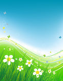 Green field with butterflies, summer background. Vector illustration Royalty Free Stock Photography