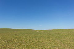 Green field , clear blue sky , rural landscape background Stock Photos