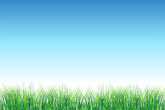 Green field on clear sky. Vector illustration Stock Images