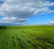 Green field and clouds Stock Photo