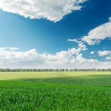 Green field and clouds over it Royalty Free Stock Photography
