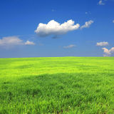 Green field and clouds in sky Stock Photography
