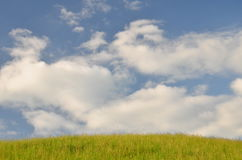 Green field and clouds in the sky Royalty Free Stock Photography