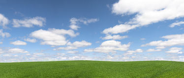 Green field and cloudscape Stock Image