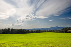 Green Field with cloudy sky Stock Image