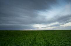Green field and cloudy sky Stock Image