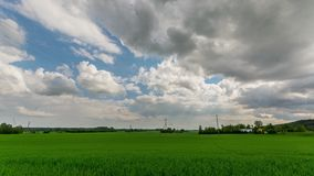 Green field and cloudy sky timelapse. Beautiful summer landscape. stock video