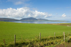 Green field and coastline Stock Images