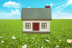 Green field and cottage Royalty Free Stock Photography