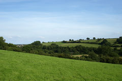 Green Field Countryside View. Green Meadow and Blue Sky in Summer Royalty Free Stock Photo