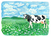 Green field with cow, flowers and copy space. Vintage rural background with summer landscape, watercolor illustration with design graphic elements Royalty Free Stock Images