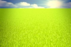 Green field 3D Royalty Free Stock Image