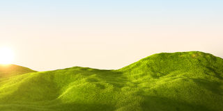 Green field. 3d rendering of a green field and sky Stock Photo