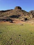 Green field and peak in Gran Canaria. Green field in the dam of las niñas, Gran Canaria, Canary islands stock photography
