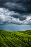 Green field with dark clouds in the background Stock Images