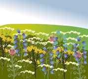 Green field with different wildflowers. Image of nature vector. Royalty Free Stock Images