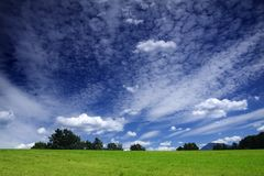 Green Field and Dramatic Sky. Beautiful green field, bushes on the horizon and blue sky with dramatic clouds Royalty Free Stock Photo