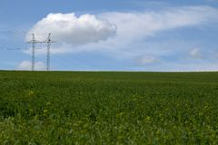 Green field with electric tower Stock Images
