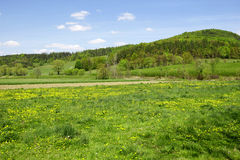 Green field. Excellent sky and green fields landscape Stock Photos